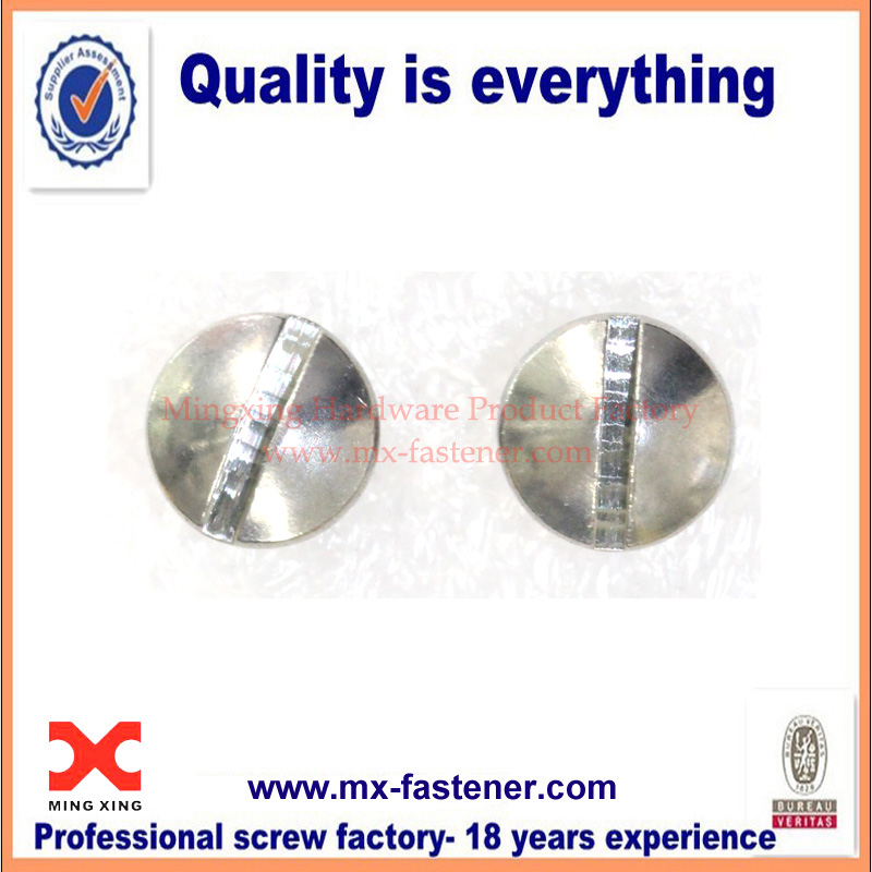 Stainless steel slotted head sealing screw