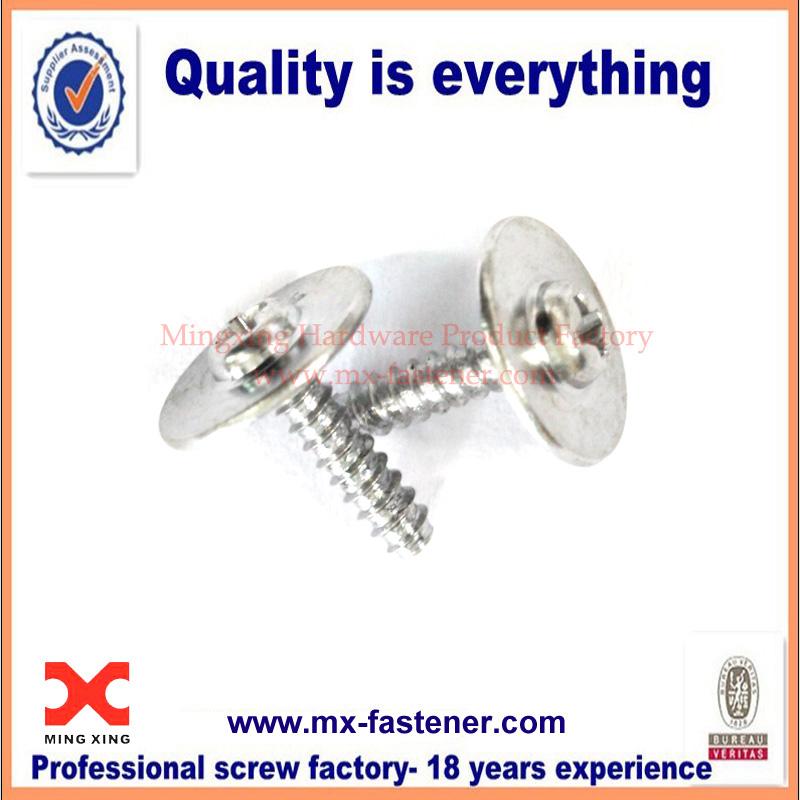 Galvanized round washer head screw