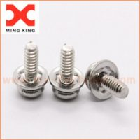 Crest cup washer screw stainless steel